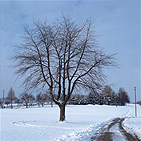3A5-vinter.jpg